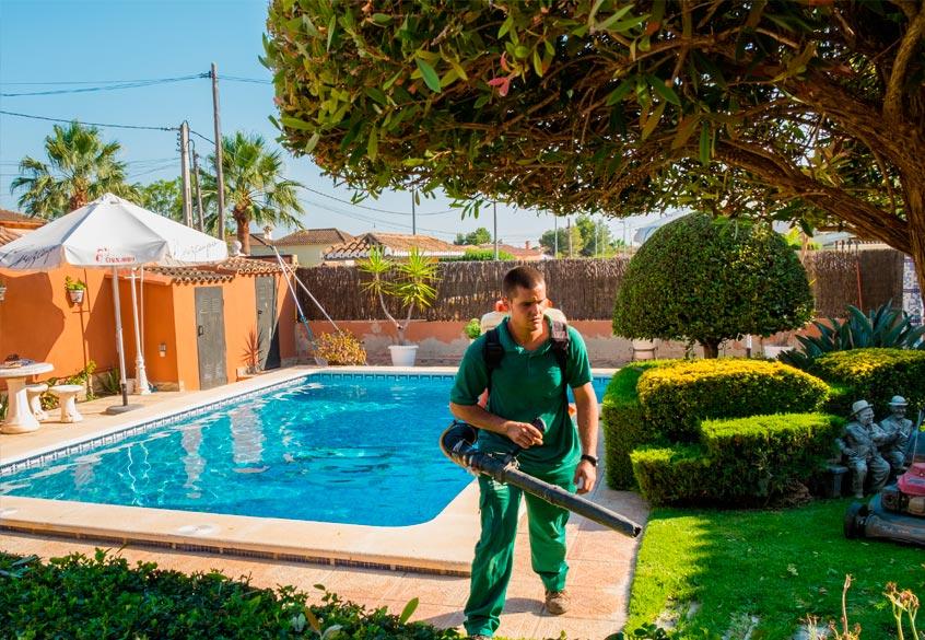 Con cenos natur jardin valencia dise o y mantenimiento de jardines y piscinas - Mantenimiento piscinas valencia ...