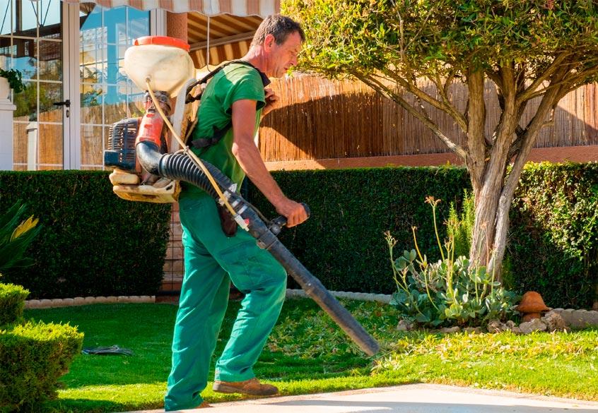Con cenos natur jardin valencia dise o y mantenimiento for Busco jardinero