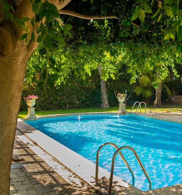 Mantenimiento de piscinas natur jardin valencia dise o for Piscina jardin valencia