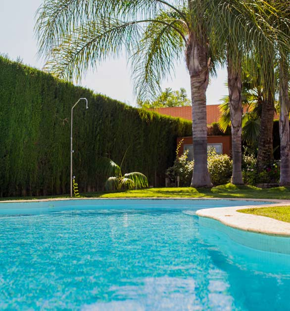 mantenimiento de piscinas natur jardin valencia dise o